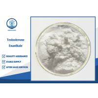 Buy cheap Testosterone Enanthate Powder CAS 315-37-7 , Muscle Gain Steroids SGS Approved from wholesalers