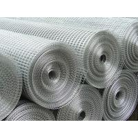 Buy cheap Welded wire Mesh Fencing /Chicken  Aviary Fence /Pet Rabbit from Wholesalers