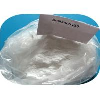 Testosterone Sustanon 250 Testosterone Blend , White Crystalline Weight Loss Powder