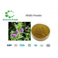 Buy cheap Alfalfa Powdered Herbal Extract Medicago Sativa Natural Herb Powder product