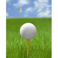 Buy cheap Best and newest golf grass SJAGF10-3E from wholesalers