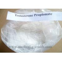 Buy cheap Testosterone Propionate Pharmaceutical Grade Testosterone Anabolic Steroid Powder Test Prop product