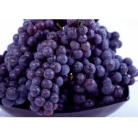 Buy cheap Health Currant Fresh Purple Grapes 23mm with Haccp , Global Gap product