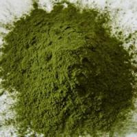 Buy cheap Alkaline Dietary Supplement Green Food Alfalfa Grass Juice Powder Extract Powder product