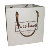 Art paper bag with hot stamping