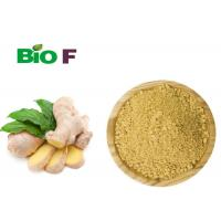Buy cheap Instant Vegetable Extract Powder Non - Polluted Dried Oganic Ginger Powder product