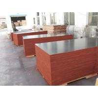 Film Faced Decorative Plywood Sheets 2 Times Hot Press High Strength Design