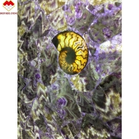 Buy cheap Polished Gemstone Amethyst Faux Marble Panels For Decoration Wall Slab product