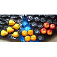 China Fresh Fruit Packaging Tray on sale