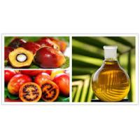 China Industrial Olive Oil  Palm oil Separation Decanting Centrifuge With Spiral Solid Discharge OEM on sale
