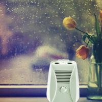 Buy cheap Mini DC 6V Home Electronic Air Purifier With Dual Ion And Ozone Function product