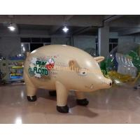 pig balloon - quality pig balloon for sale