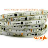 Buy cheap DC12V Addressable  5050 Flexible LED Strip Light , Silicon Waterproof  IP65  LED  Tape product