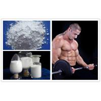Buy cheap White Powders Muscle Building Steroids Lidocaine Hydrochloride for Bodybuilding product