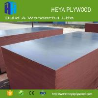 China 2018 waterproof concrete form board film faced plywood market manufacturers on sale