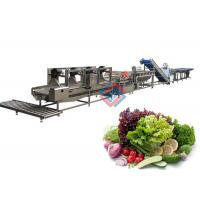 China Salad Production Line Fruit And Vegetable Processing Washing Cutting Line on sale