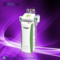 China Vertical amazing result best cryolipolysis weight loss slimming equipment to losing weight on sale