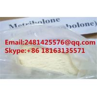 China Raw Trenbolone Sex Steroid Hormone Methyltrienolone Metribolone For Male Muscle Growth CAS 965-93-5 on sale