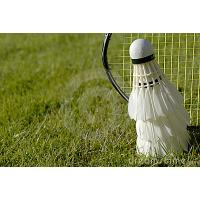 Buy cheap 2011 newest Badminton artificial grass product
