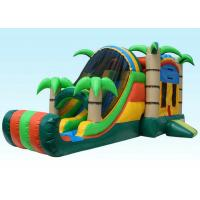 Buy cheap Gaint Inflatable Bouncer Combo , Tropical Inflatable Water Castle product