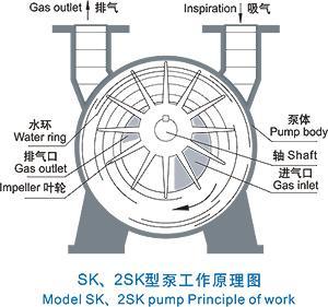 water ring vacuum pump.jpg
