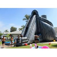 Buy cheap Giant Inflatable Slide 33ft High Hurricane Water Slide Inflatables For Adults product