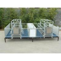 Buy cheap Piglet crate product