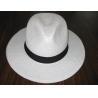 Buy cheap Straw Hats,Panama Hats,Cowboy Hats,Men's Hats from wholesalers