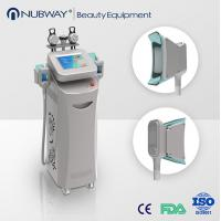Cryotherapy machine,best technology lipo-laser fat freezing fat cell slimming machine