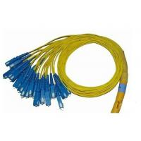 Buy cheap 24 Fiber Breakout Optical Fiber Patch Cord PVC Jacket , Universal Fiber Optic Jumper product