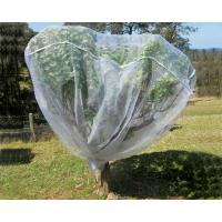Buy cheap Fruit Tree Net, 20-50mesh,0.5-6.0m,green and white,protect the trees,Agricultural Plastic Products product