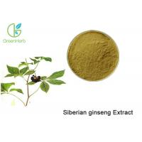 Buy cheap Brown Powder Natural Plant Extracts / Siberian Ginseng Root Extract Anti - Fatigue product