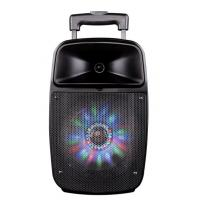 Buy cheap 12 Inch Bluetooth Function Rechargeable Portable Trolley Speakers With Led Lights product