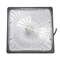 Buy cheap Slim Gas Canopy LED Lights 45 Wattage 5000k With IP 65 Motion Sensor from wholesalers
