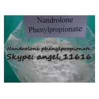 Buy cheap CAS 62-90-8 DECA Hormone Steroid Nandrolone phenylpropionate For Cutting Cycle NPP product