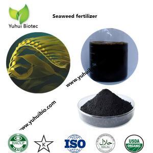 Buy cheap best seaweed fertilizer,liquid kelp organic seaweed fertilizer, seaweed base fertilizer product