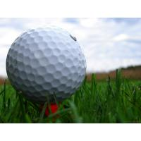 Buy cheap Best and newest golf grass SJAGF10-3B product