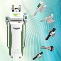 China Advanced cooling technology (Cryolipolysis) kill stubborn fat cells CoolSculpting slimmer on sale