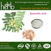 Quality Boswellia extract for sale