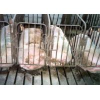 Buy cheap farrowing crate product