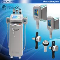 China professional cryolipolysis fat loss slimming machine with CE certification on sale