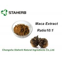 Buy cheap Medical Herbal Extract Ratios Maca Root Extract Powder 4:1 For Male Health Care Product product
