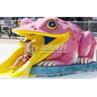 Colorful Small Frog Water Slide / Kids' Water Slides Safety for Aqua Park Playground Equipment