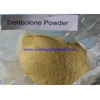 Anabolic 99% Assay Trenbolone Powder 100mg 10161 33 8 For Weight Loss And Increase Muscle