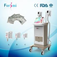 Buy cheap 15 Inch Touch Screen Cryolipolysis Cellulite Reduction Fat Freezing Beauty Machine product