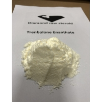 China Pure Tren Enan / Trenbolone Enanthate Steroid Powder Increase Muscle Endurance on sale
