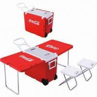 China 28L camping cooler box/portable camping refrigerator/camping accessories on sale