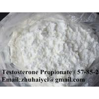 Buy cheap High purity Testosterone Propionate Test P CAS 57-85-2 Raw Steroid Hormone Powder product