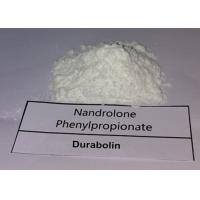 Buy cheap Nandrolone Phenylpropionate White Powder DECA Durabolin CAS 60-70-3 For Muscle Building product