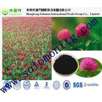 China GMP&ISO 100% natural isoflavones 8%, 20%, 40% red clover extract benefits on sale